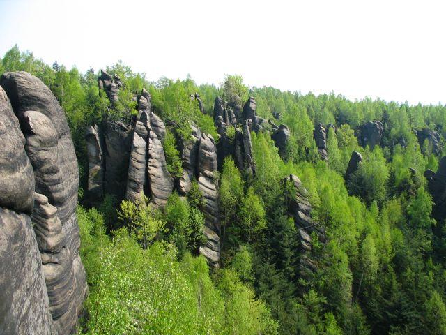 Zdjęcia: Broumovskie Steny, kamienny las, CZECHY