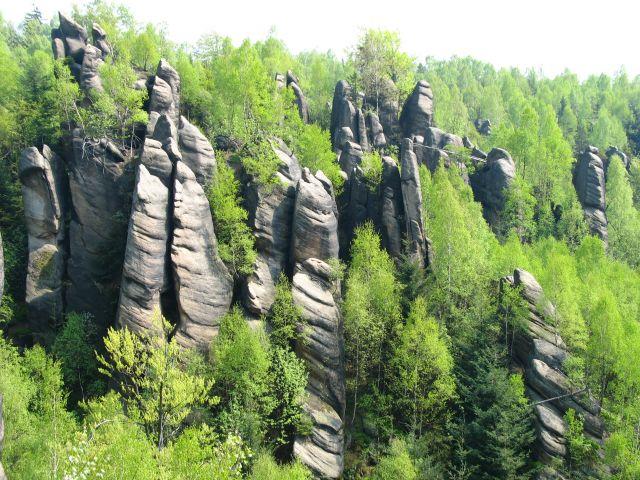 Zdjęcia: Broumovskie Steny, w kamiennym lesie, CZECHY