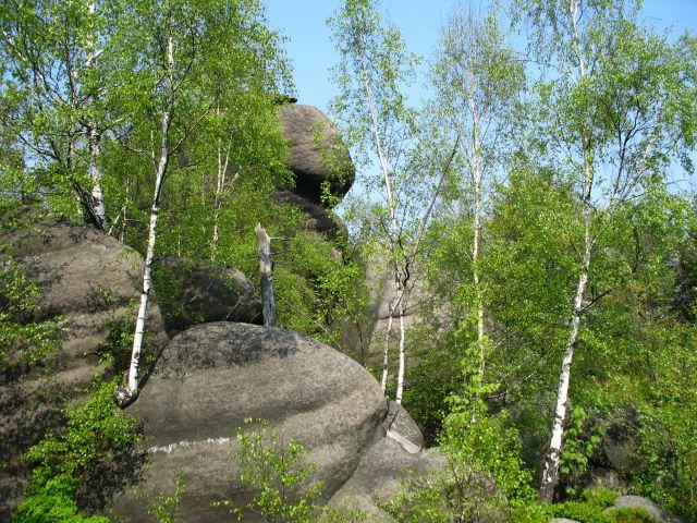 Zdjęcia: Broumovskie Steny, wśród zieleni, CZECHY