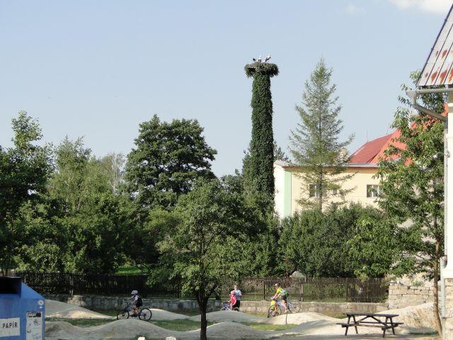 Zdjęcia: Stara Czerwena Woda, Góry Rychlebskie, Zielone bocianie gniazdo., CZECHY