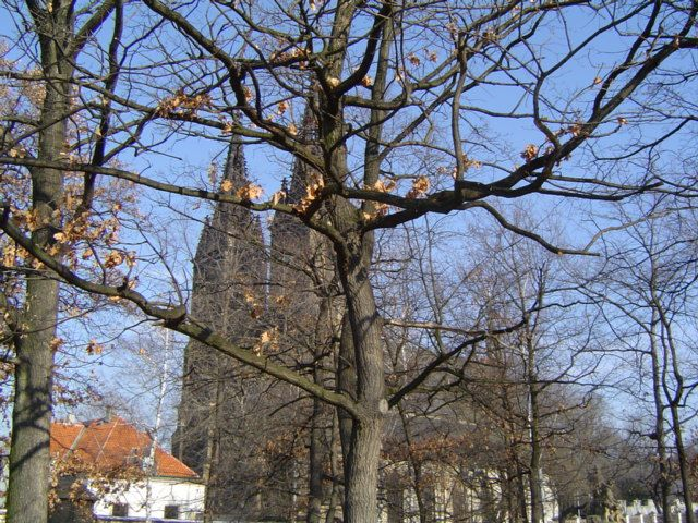 Zdjęcia: Wyszehrad, Praga, Kościół Św. Piotra i Pawła, CZECHY