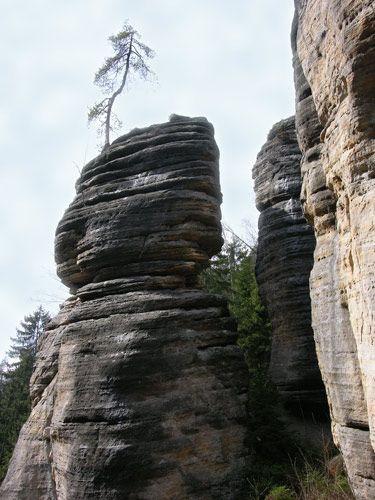 Zdjęcia: Skalne Miasto, W górach, CZECHY