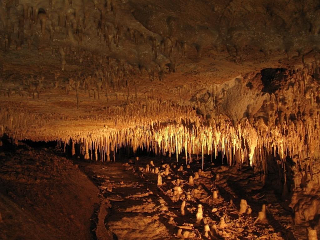 Zdjęcia: okolice Ołomuńca, Morawy Środkowe, jaskinie Jaworzyckie, CZECHY
