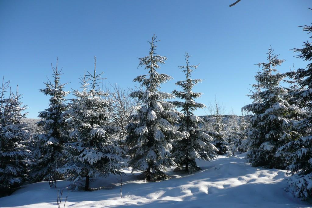 Zdjęcia: Zahradki, Karkonosze, zima w Pecu, CZECHY