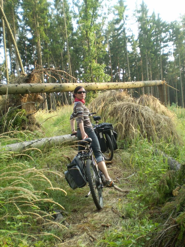 Zdjęcia: czechy, -brak, rower, CZECHY