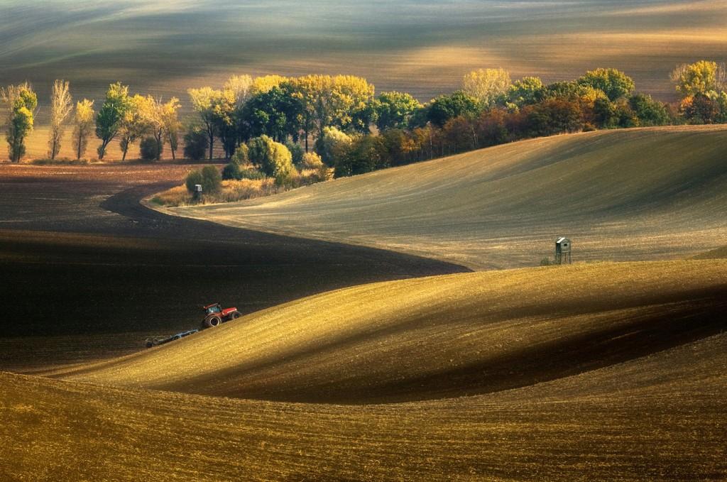 Zdjęcia: okolice miasta Kyjov, Morawy Południowe, Jesienne pola, CZECHY