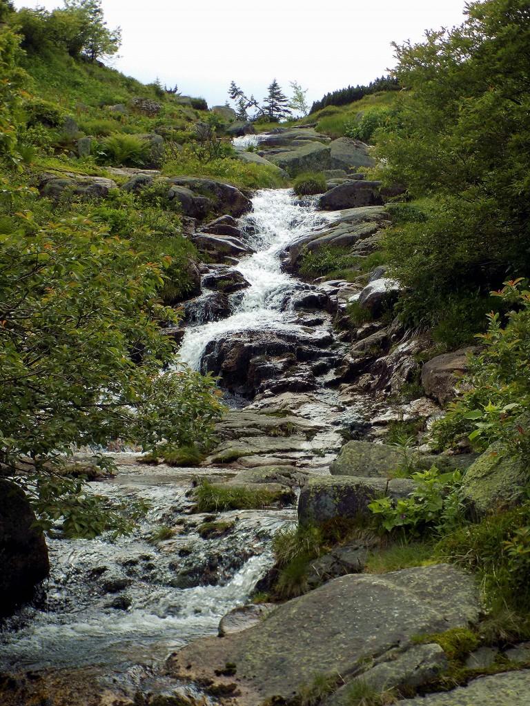 Zdjęcia: Dolina Łaby, Karkonosze, Przed wodospadem, CZECHY