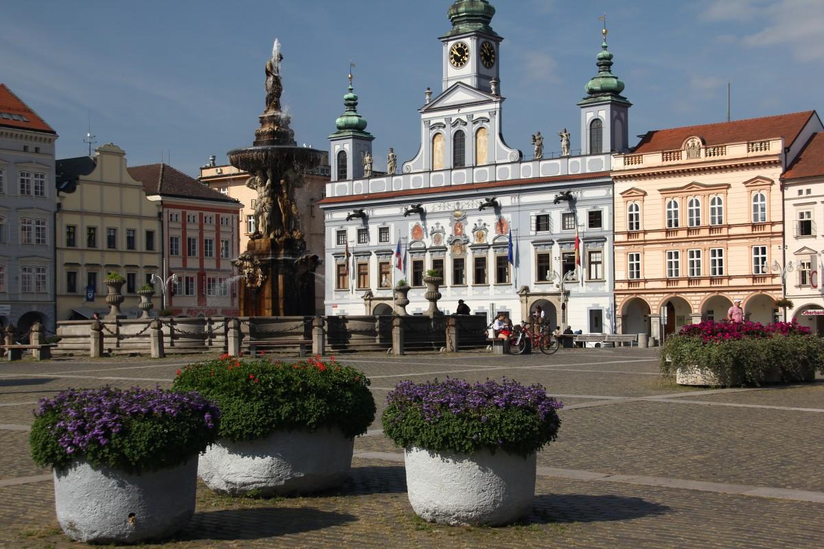 Zdjęcia: Czeskie Budziejowice, Południowe Czechy, Kwiaty na rynku, CZECHY