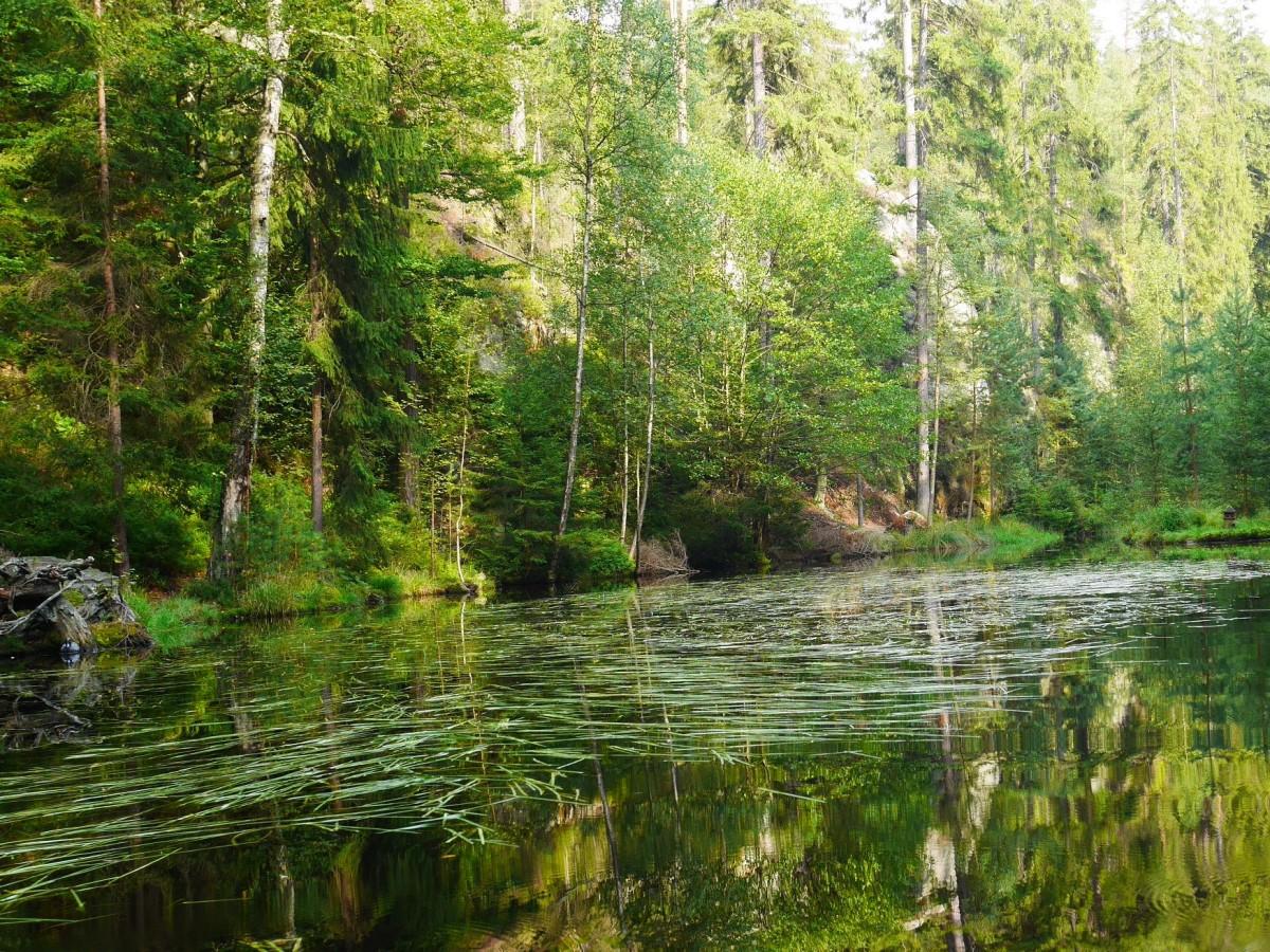 Zdjęcia: Adrspach, pólnocno-wschodnie Czechy, Jeziorko w Skalnym Mieście, CZECHY