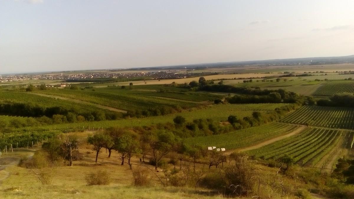 Zdjęcia: Morawy Południowe, Morawy Południowe, Krajobraz Moraw Południowych, CZECHY