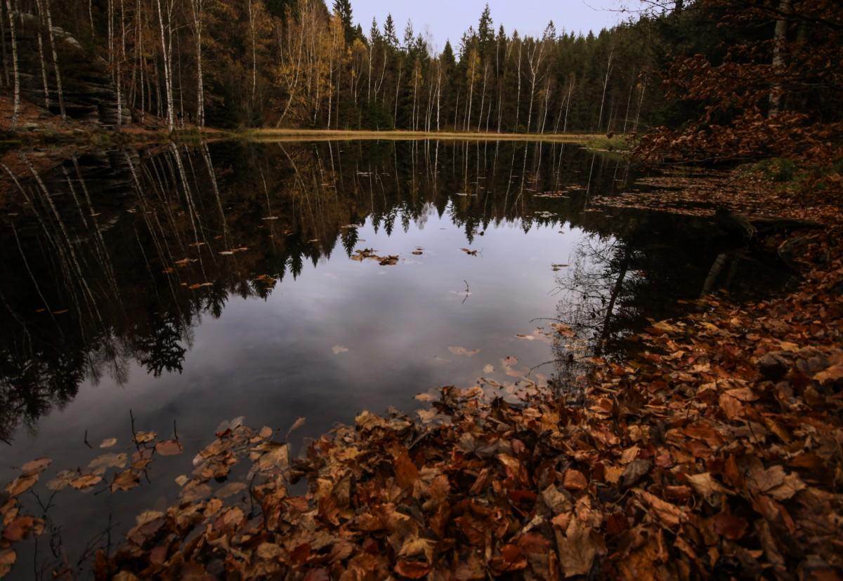Zdjęcia: Adrszpaskoteplickie Skały, płn.-wsch. Czechy, Leśne lusterko...., CZECHY