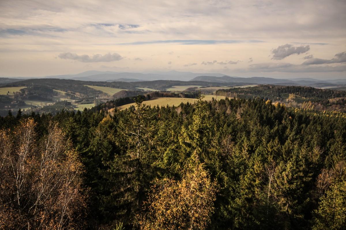Zdjęcia: Adrszpasko-Teplickie Skały, płn.-wsch. Czechy, Panorama z wieży widokowej., CZECHY