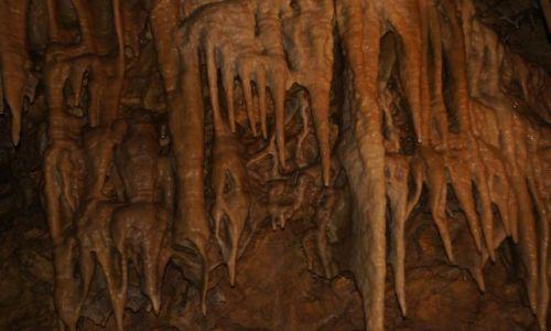 Zdjecie CZECHY / - / Bozkovske Jeskyne / Jaskinia