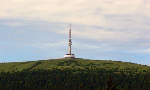 Zdjecie CZECHY / Morawy- Jesennik Wysoki / najwyższy szczyt Jesenników- Pradziad / Pradziad 1491