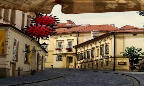 Zdjęcie CZECHY / Morawy / Brno / Brno