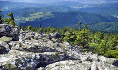 Zdjęcie CZECHY / Morawy / Jesioniki / Góry