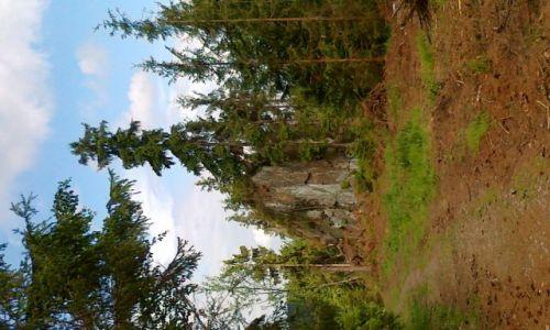 CZECHY / Góry Opawskie / Rejviz / Chlapeckie kamienie