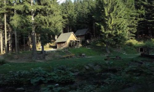 Zdjecie CZECHY / Góry Opawskie / Dolni Udoli / Zlatorudne mlyny