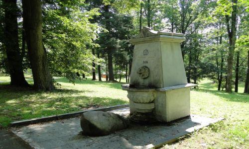 Zdjęcie CZECHY / Góry Opawskie / Jesenik / Żródełko z lwem