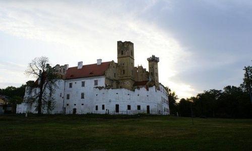Zdjęcie CZECHY / Morawy Południowe / Brzecław / Ruiny zamku w Brzecławiu