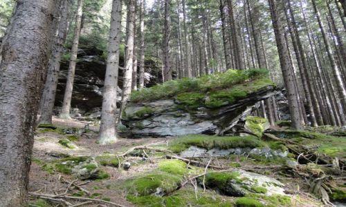 Zdjecie CZECHY / Góry Opawskie / Rejviz / Formacje skalne...Rejviz