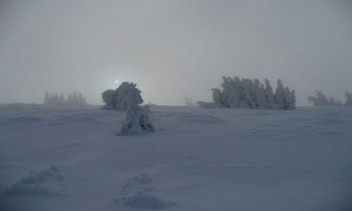 Zdjęcie CZECHY / - / Pradziad / Przed śnieżycą na Pradziadzie. Konkurs