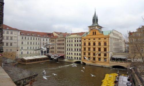 Zdjecie CZECHY / Praga / Przy Moście Karola / Wycieczka do Pragi