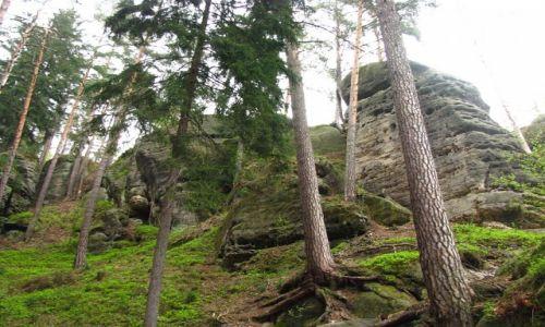 CZECHY / Czeska Szwajcaria / Hreńsko / skałki