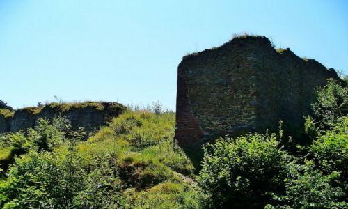 Zdjęcie CZECHY / Śląsk / Krnov / Krnov, ruiny zamku Selenburg
