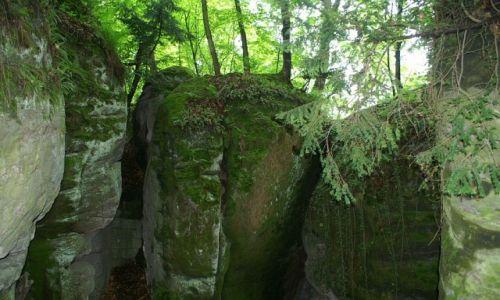 Zdjęcie CZECHY / Czeski Raj / Hruboskalsko / skalne miasto