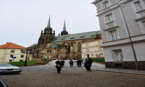 Zdjęcie CZECHY / Morawy / Brno / Brno, katedra