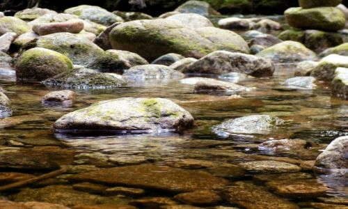 Zdjęcie CZECHY / Karkonosze / Dolina Łaby / Dolina Łaby, z pozycji żaby