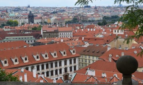 Zdjecie CZECHY / Praga / Praga / Dachy Pragi