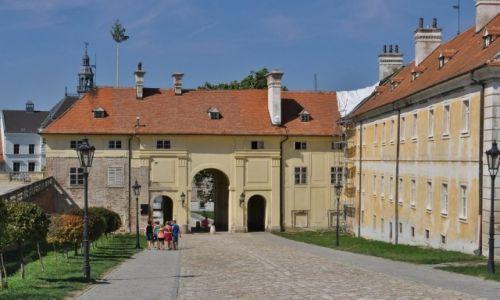 Zdjęcie CZECHY / Morawy / Valtice / Valtice, miasto