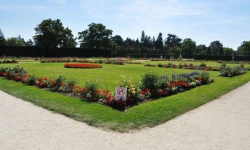 Zdjęcie CZECHY / Morawy / Lednice / Lednice, pałac, ogród