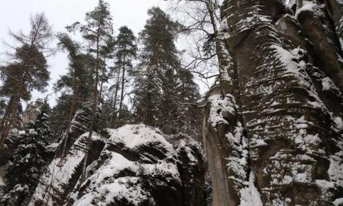 Zdjecie CZECHY / G�ry Sto�owe / Skalne Miasto-Adrspach / Zima