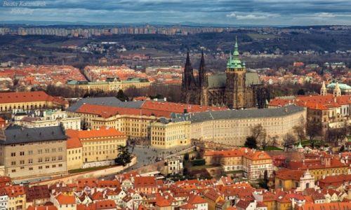 Zdjęcie CZECHY / Czechy / Praga / Praga