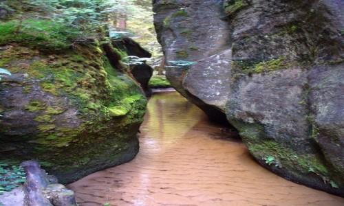 Zdjęcie CZECHY / adrszpasko-teplicki / Skalne Miasto / Srumień między skałami