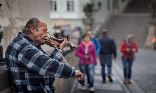 Zdjęcie CZECHY / Praga / Hradczany / Grajek