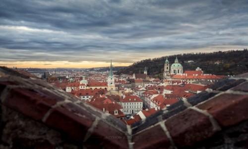 Zdjęcie CZECHY / Praga / Hradczany / Kolorowo