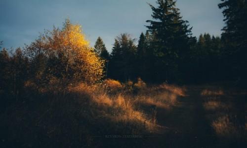 Zdjęcie CZECHY / Góry Kamienne / Ruprechticky Spicak / Światło