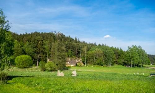 Zdjecie CZECHY / Kraj Hradecki / Adrpsach / Samotny domek