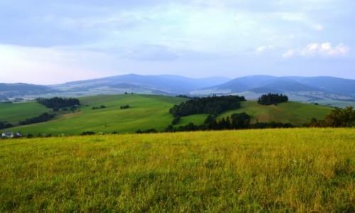 Zdjecie CZECHY / Kraj Pardubicki / Kr�l�ky / Masyw �nie�nika