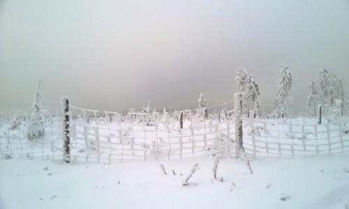 Zdjecie CZECHY / - / Paprsek / zima