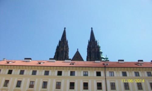 Zdjecie CZECHY / - / Praga / Archikatedra