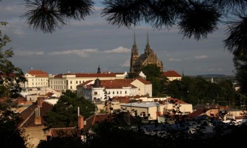 Zdjęcie CZECHY / Południowe Czechy / Brno / Widoczek na miasto