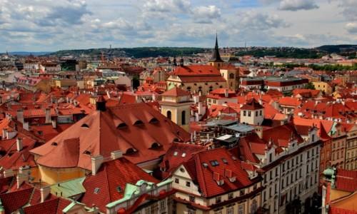 Zdjecie CZECHY / Praga / Praga / Czerwone dachy Pragi