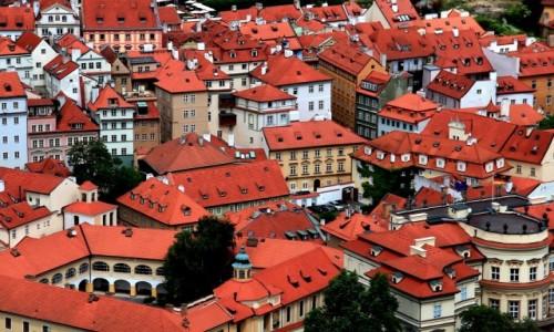 CZECHY / Praga / Praga / Czerwone dachy Pragi