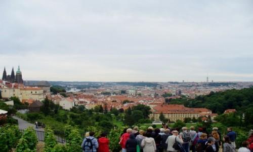 Zdjęcie CZECHY / Kraj środkowo czeski / Praga / Widok na Pragę z winnic