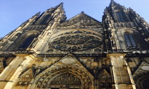 Zdjęcie CZECHY / Hradczany / Praga / Katedra Św. Wita